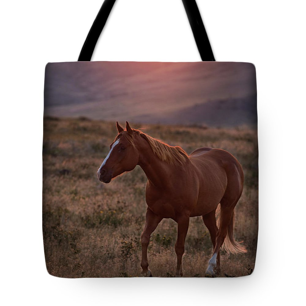 Remuda Tote Bag featuring the photograph Sunrise Horse by Terri Cage