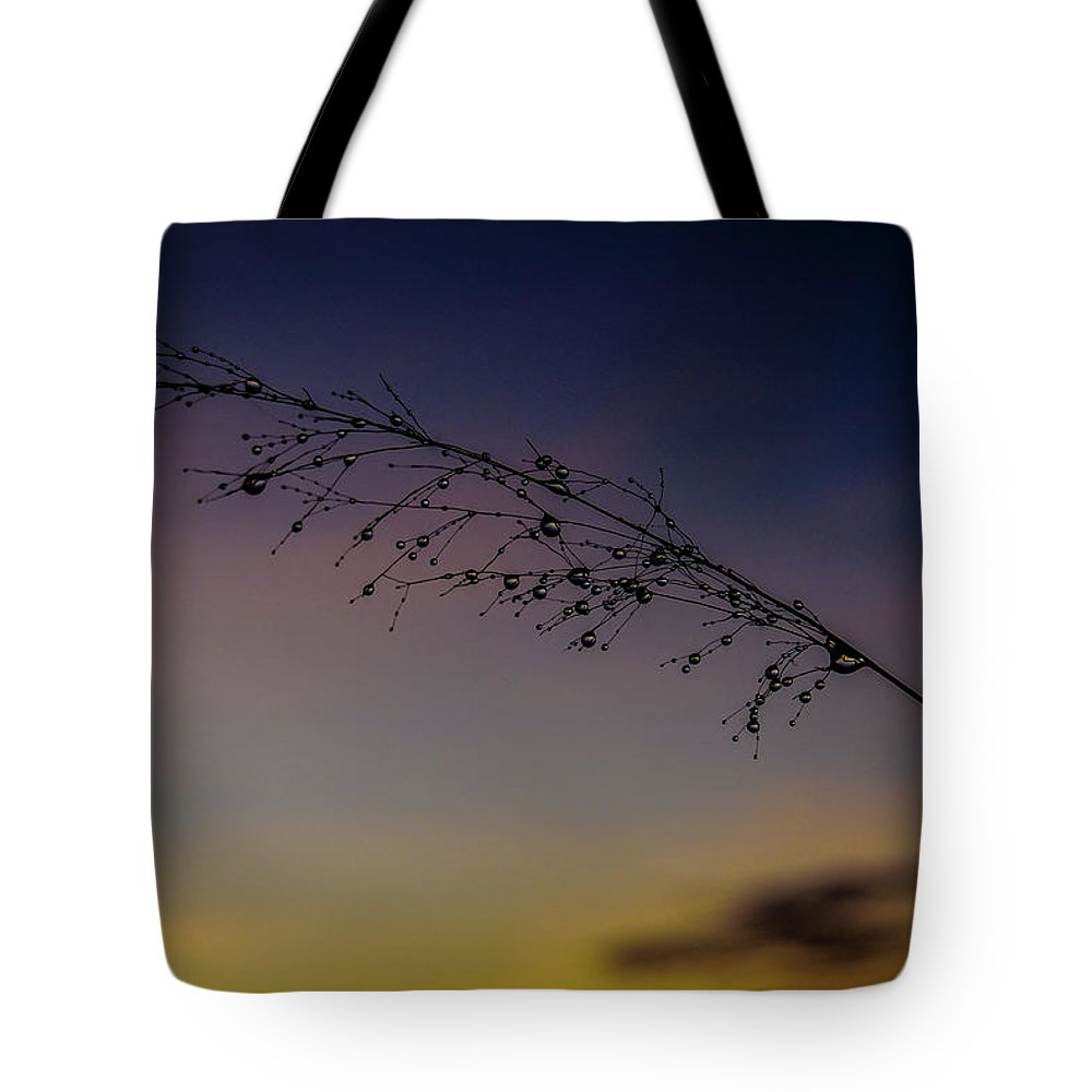 Tote Bag featuring the photograph Sunrise by Joao Costa