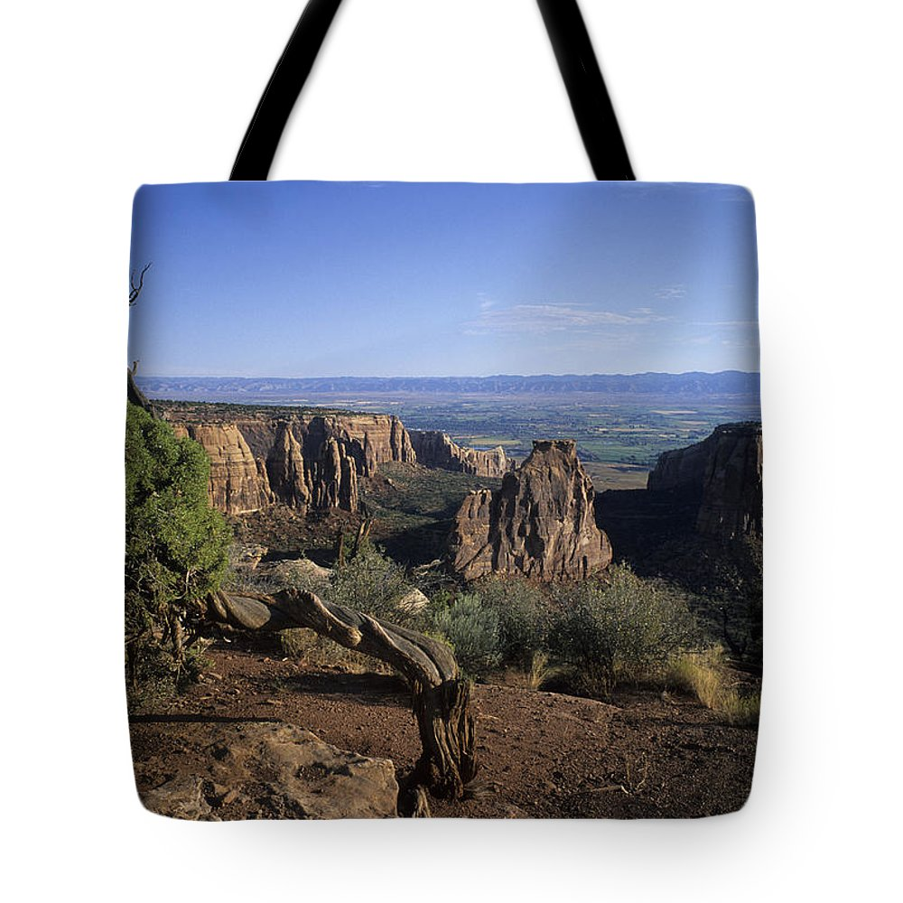Colorado Tote Bag featuring the photograph Sunrise Lights Up An Old Struggling by Taylor S. Kennedy