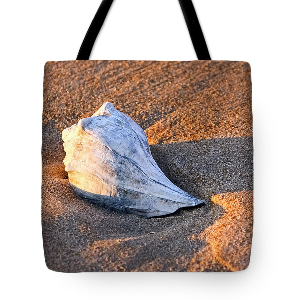Shells Tote Bag featuring the photograph Sunrise Seashell by Allan Levin