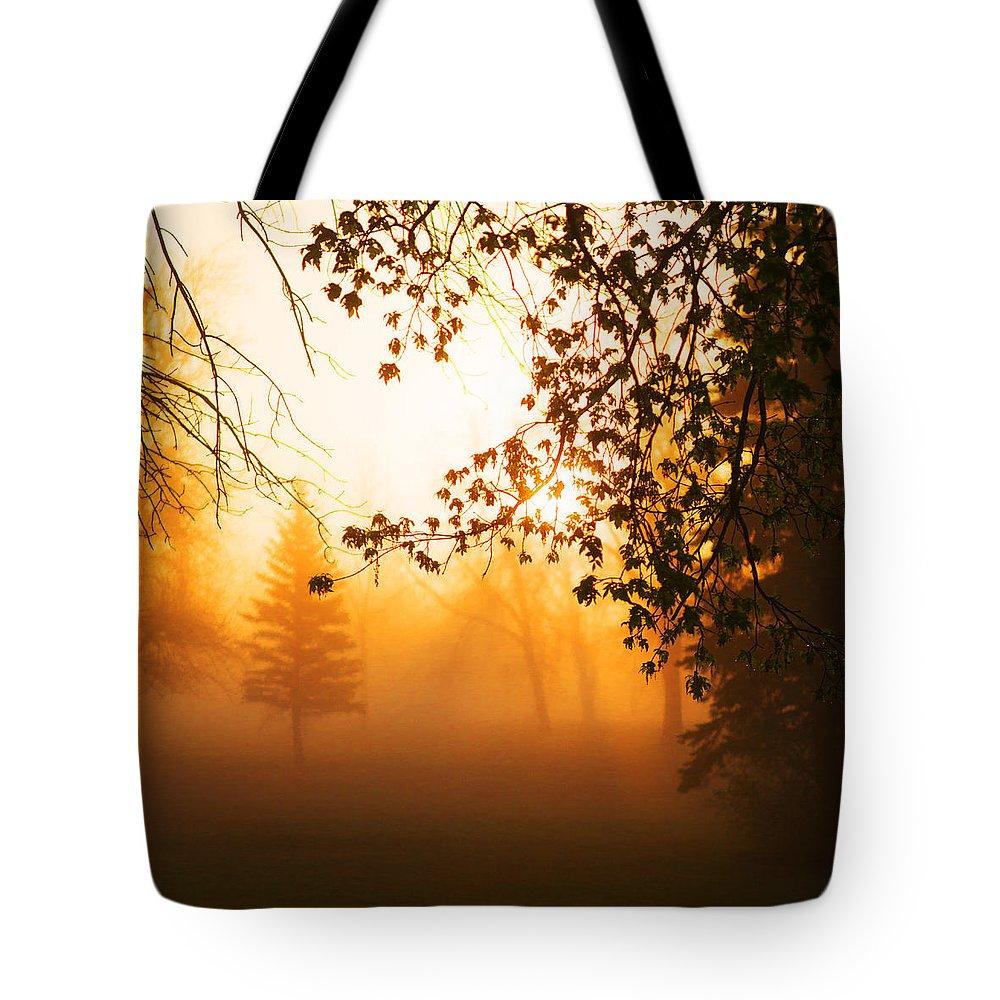 Sunrise Tote Bag featuring the photograph Sunrise Trees Fog by Donald Erickson