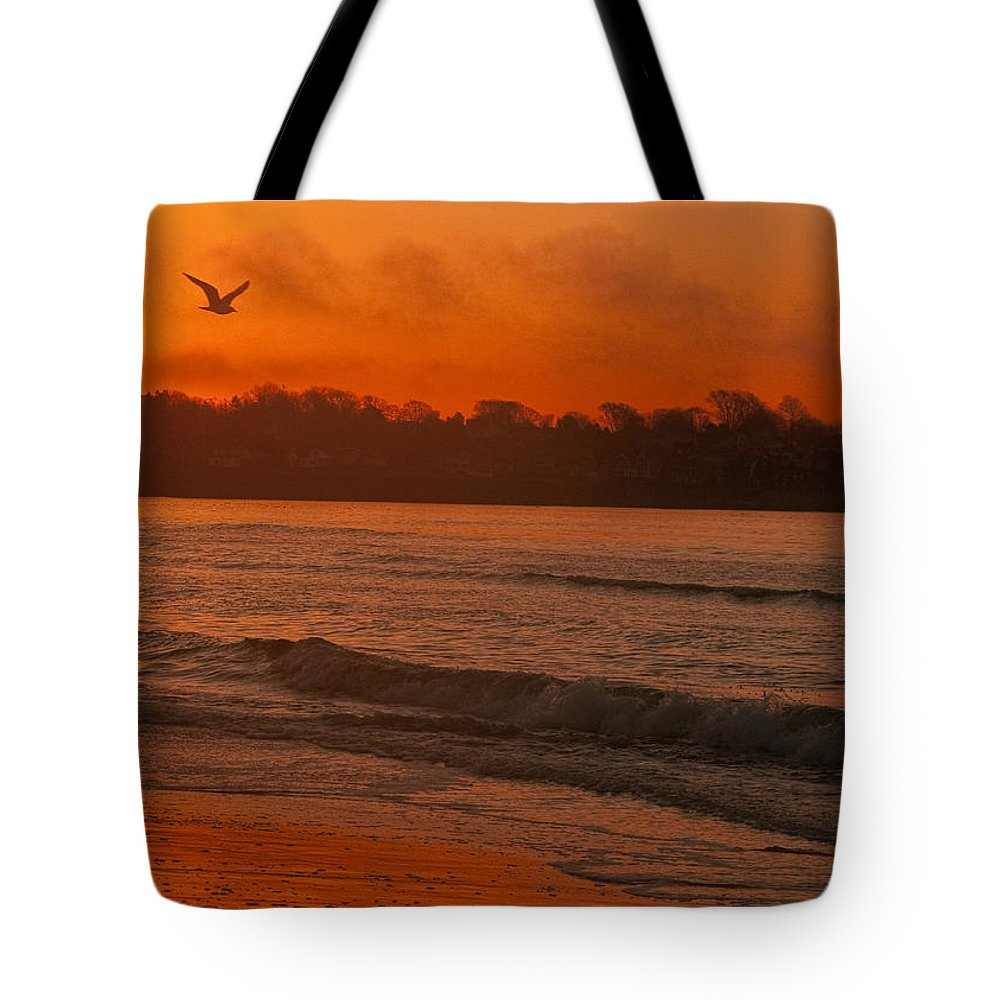 Sunrise Tote Bag featuring the photograph Sunrise With Seagull by Steven Natanson