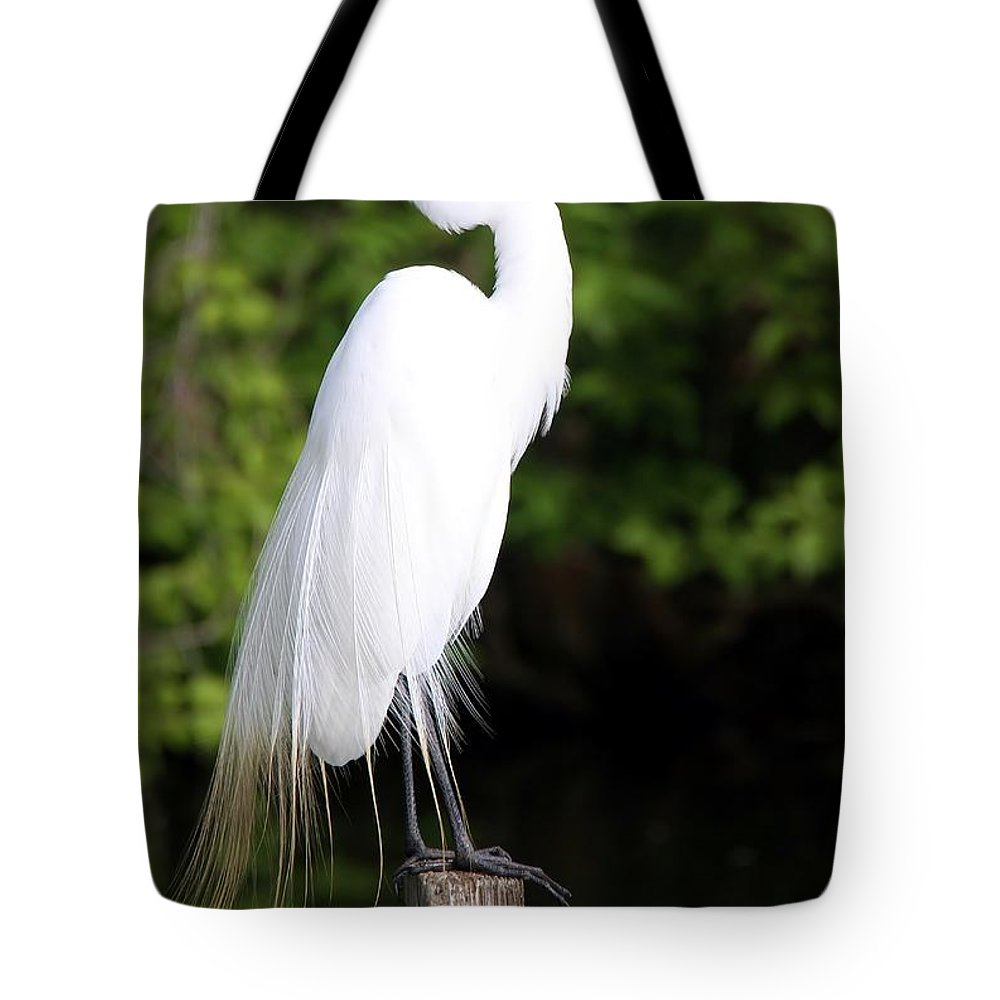 Egret Tote Bag featuring the photograph Sunrise With The Egret by Christopher Miles Carter