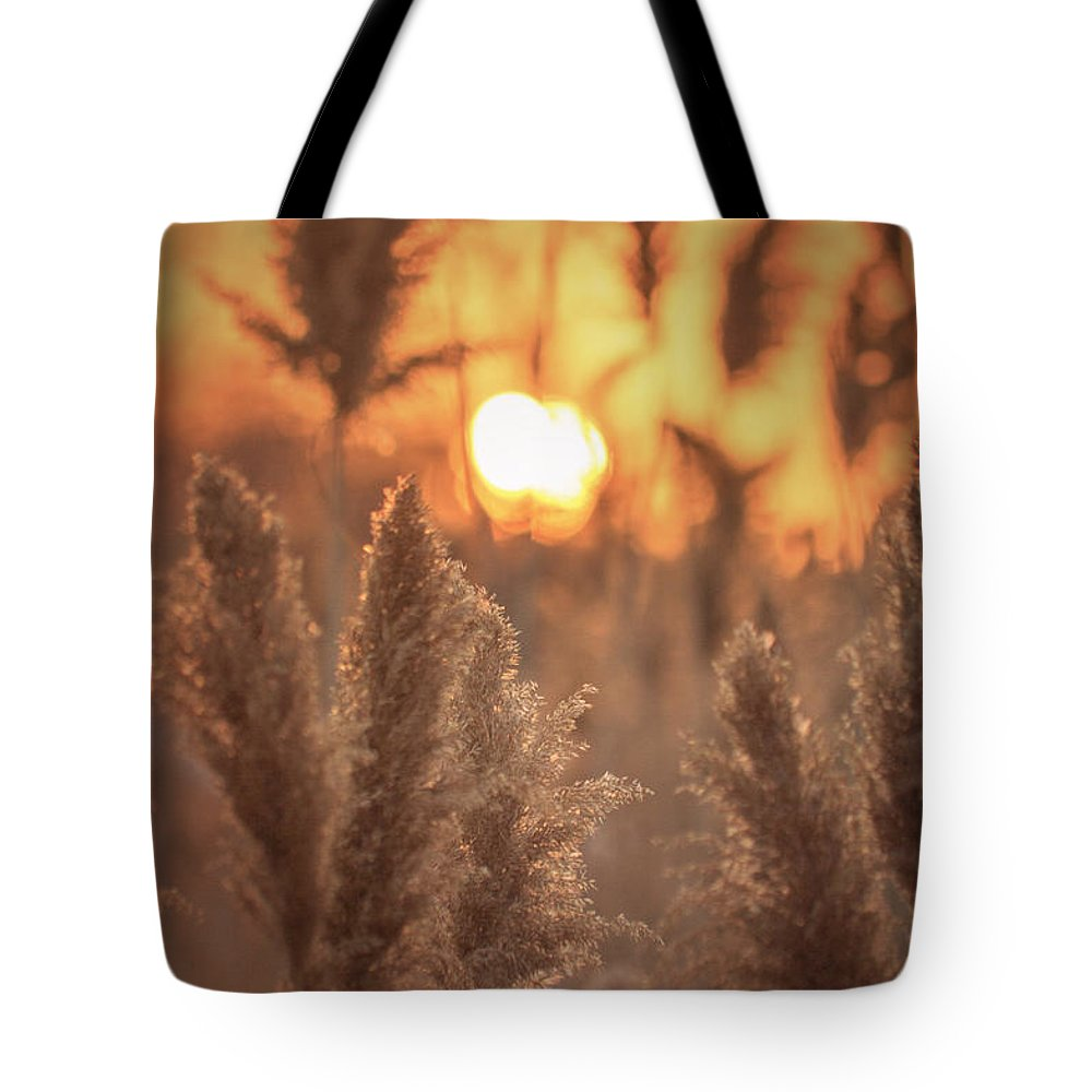 Sunset Tote Bag featuring the photograph Sunset Dreams by James Meyer
