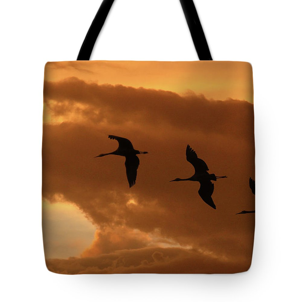 Birds Tote Bag featuring the photograph Sunset Flight by Marie Leslie