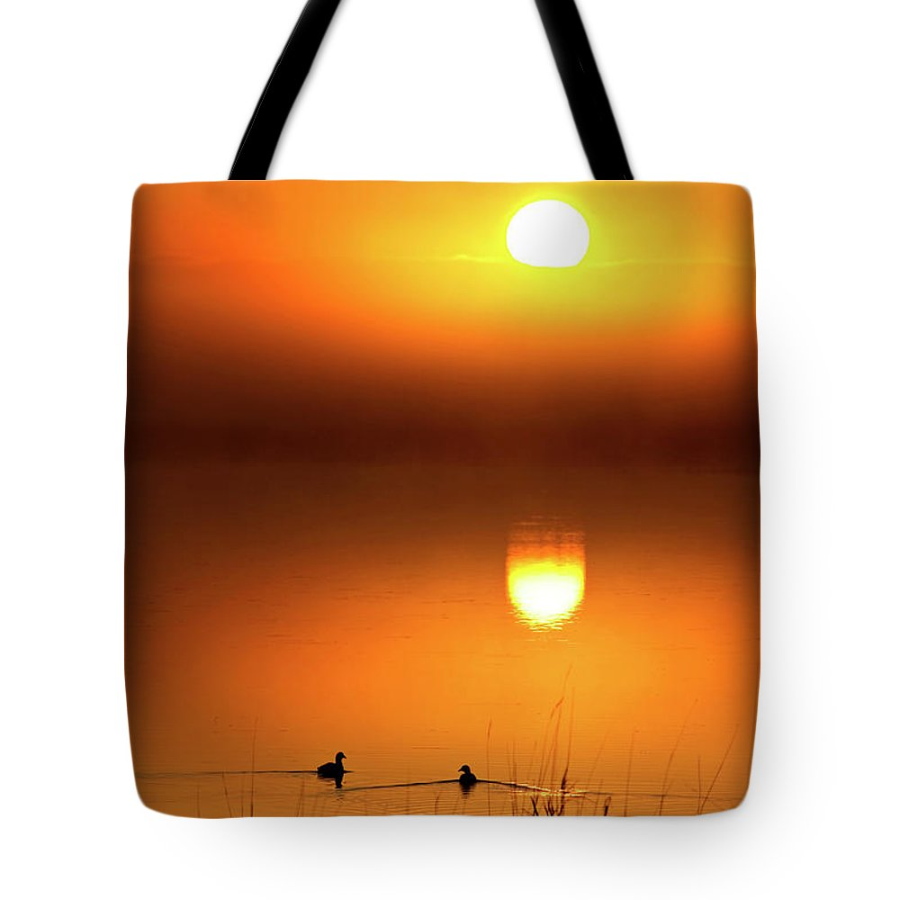 Tote Bag featuring the digital art Sunset Marshes by Mark Duffy