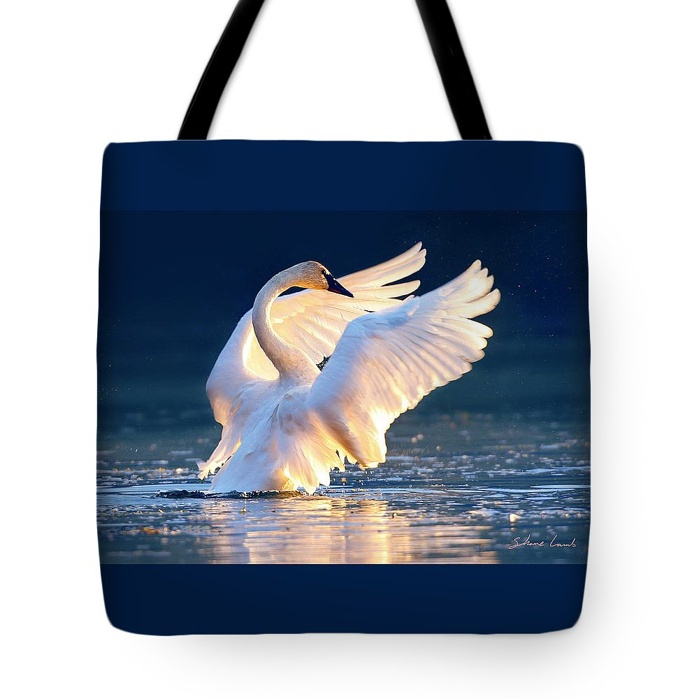 Trumpeter Swan Tote Bag featuring the photograph Sunset Symphony by Shane Lamb