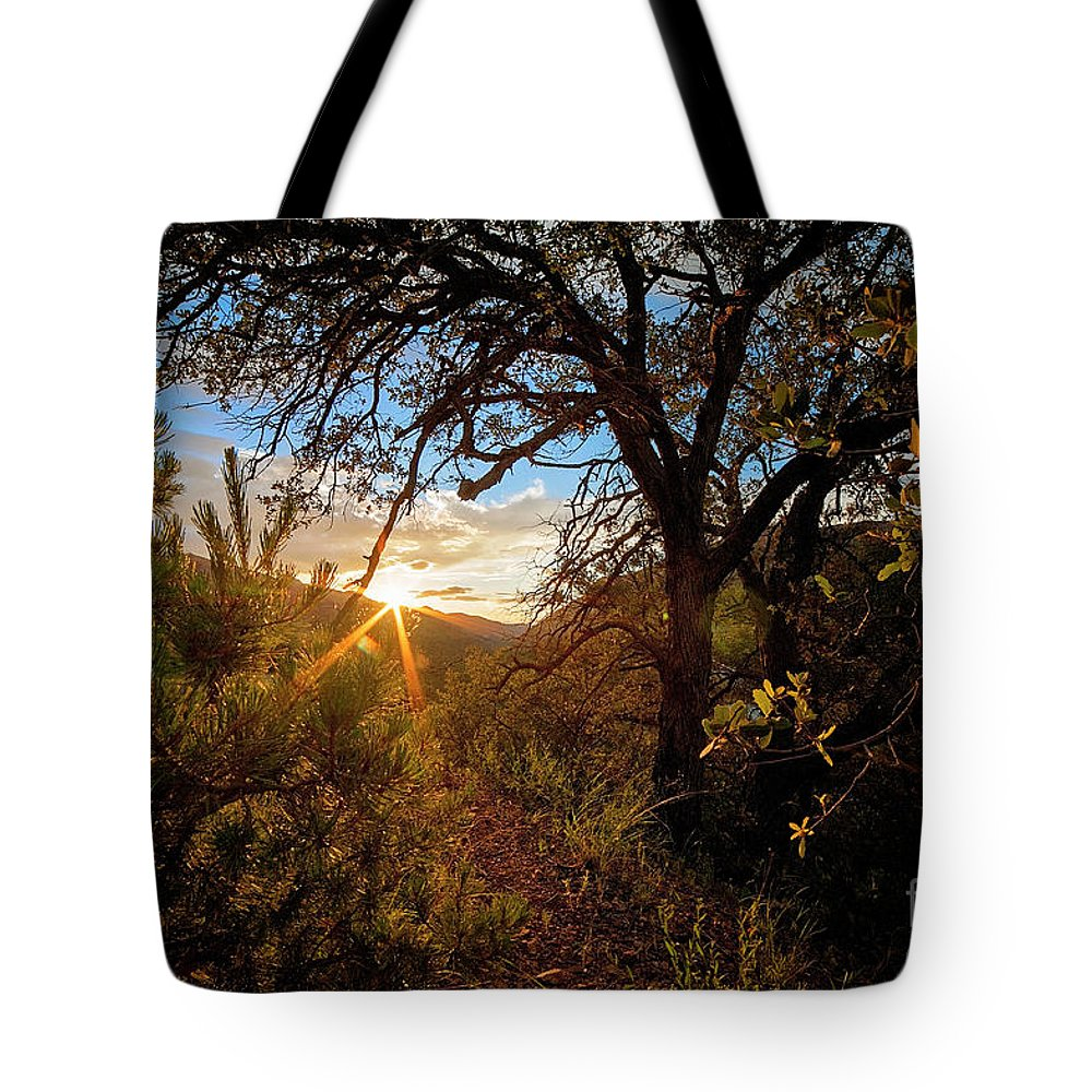 Sunset Tote Bag featuring the photograph Sunset Through The Trees by Angelina Cornidez