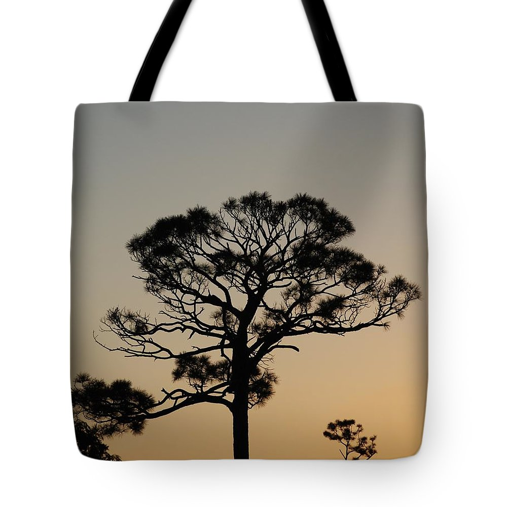 Tree Tote Bag featuring the photograph Sunsetting Trees by Rob Hans