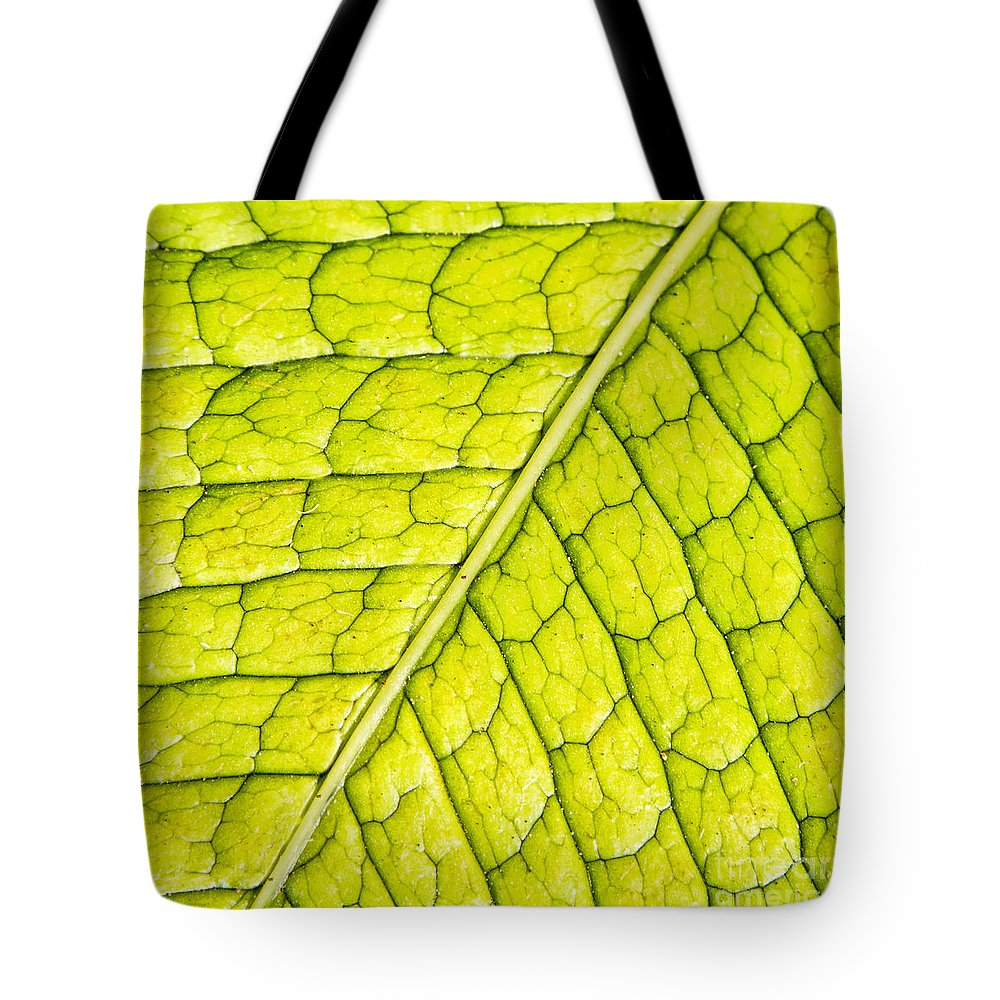 Abstracts Tote Bag featuring the photograph Surface Issues by Marilyn Cornwell