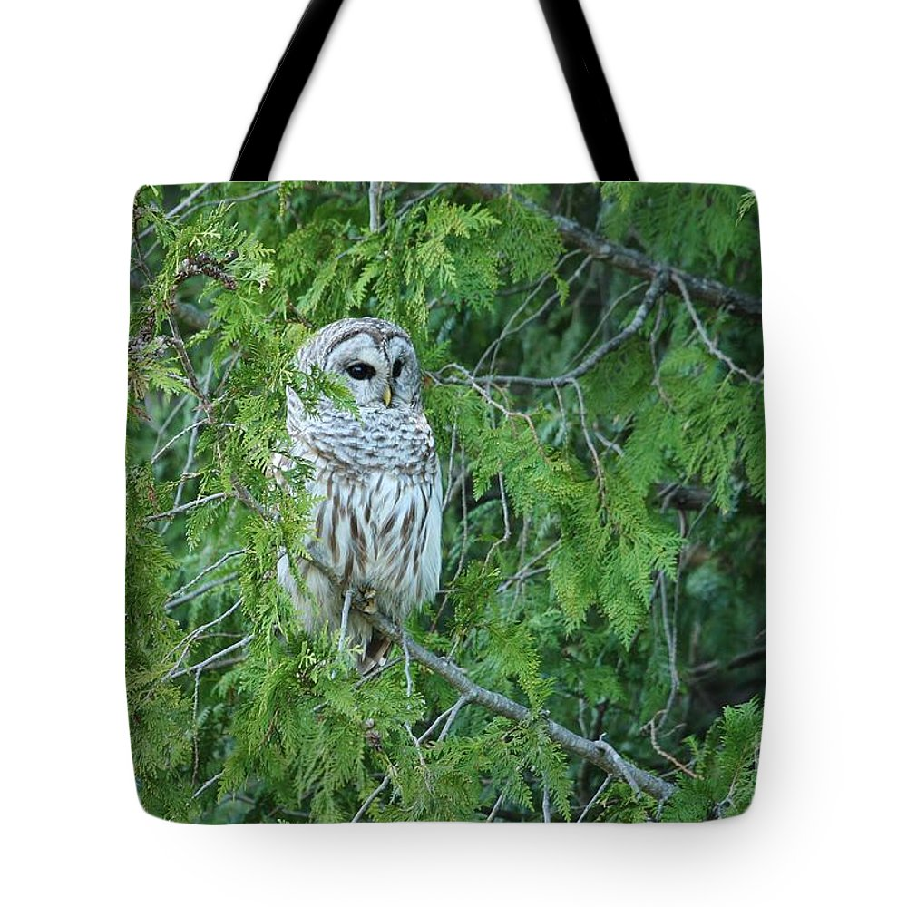 Barred Owl Tote Bag featuring the photograph Surprise Visitor II by Teresa McGill