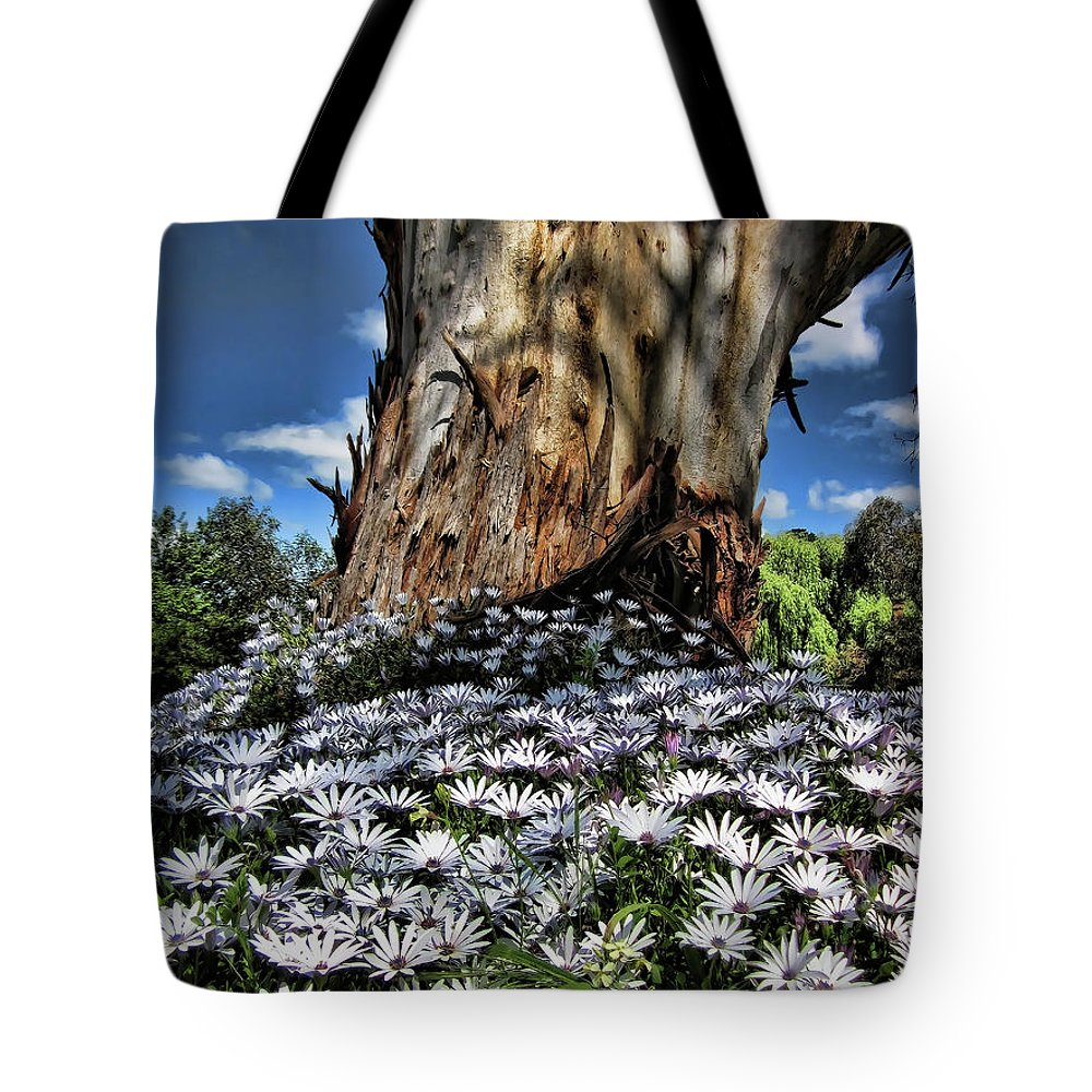 Tree Tote Bag featuring the photograph Surrounded by Douglas Barnard
