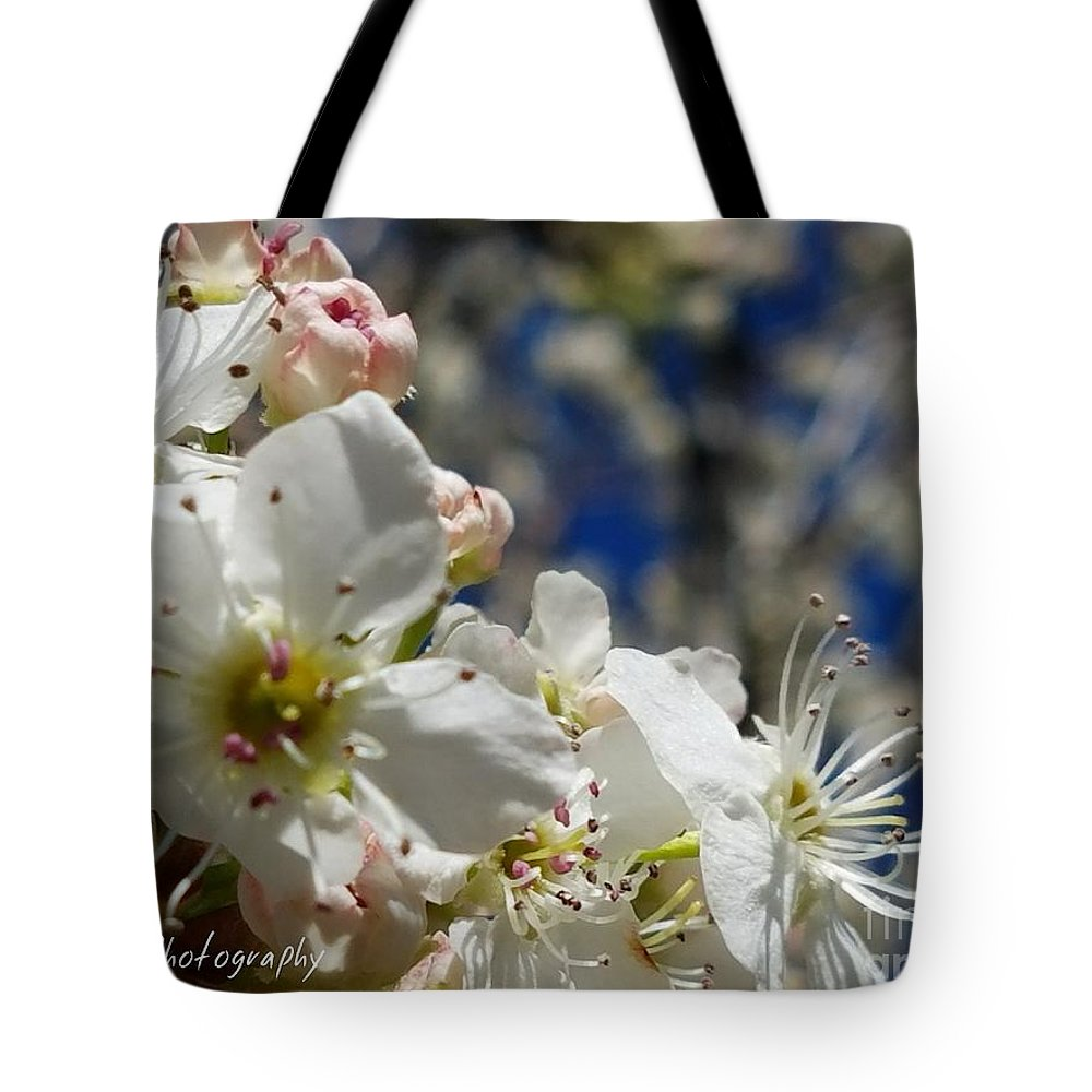 Surrounding Beauty Tote Bag featuring the photograph Surrounding Beauty by Maria Urso