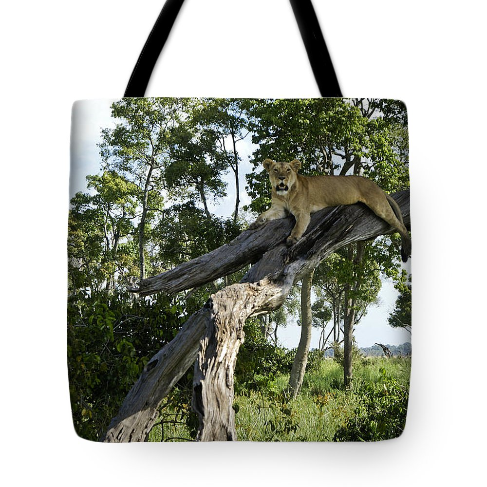 Africa Tote Bag featuring the photograph Surveying The Plains by Michele Burgess