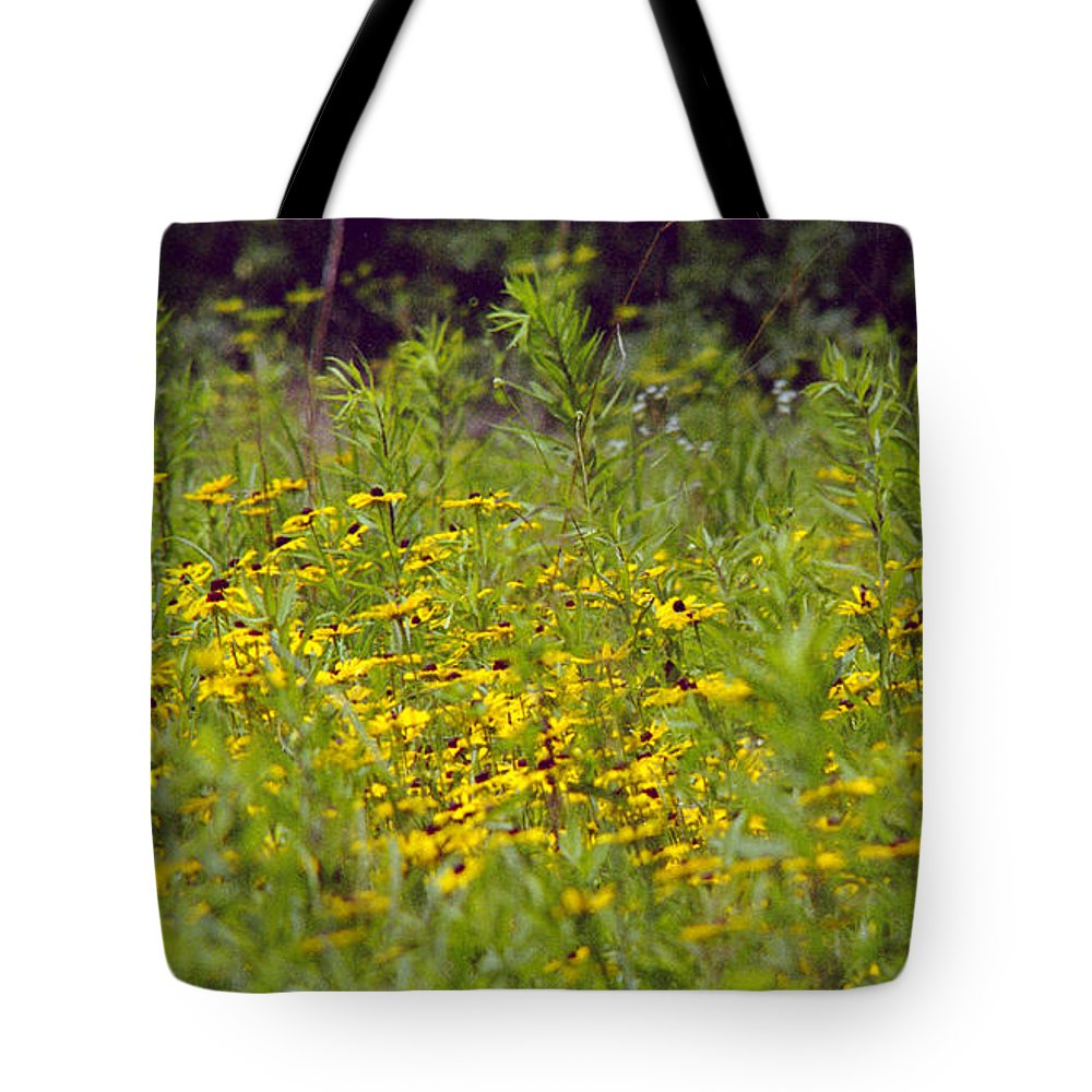 Nature Tote Bag featuring the photograph Susans In A Green Field by Randy Oberg