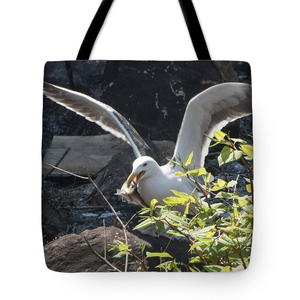 Seagull Tote Bag featuring the photograph Sushi by Steven Natanson