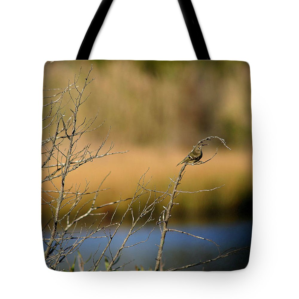 Sparrow Tote Bag featuring the photograph Swamp Sparrow by Mary Haber