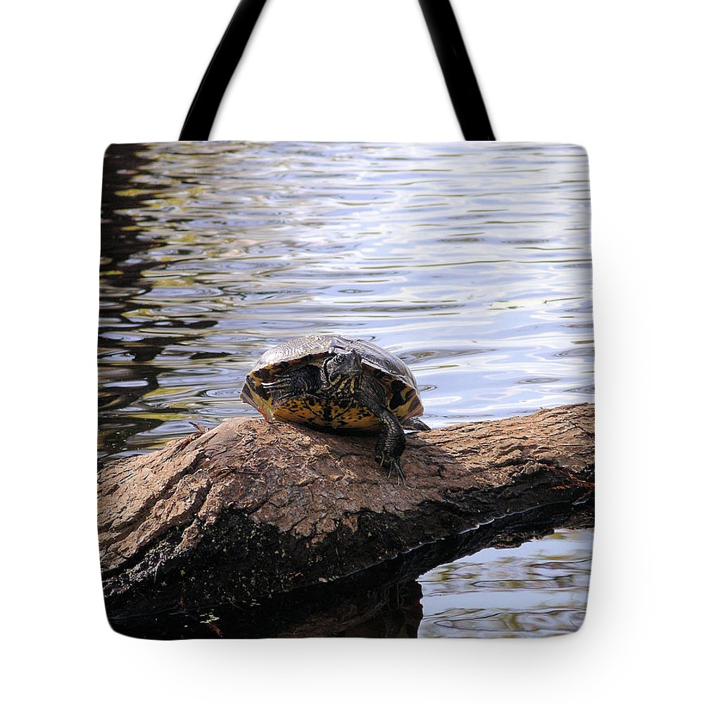 Turtle Tote Bag featuring the photograph Swamp Turtle by Rich Bodane