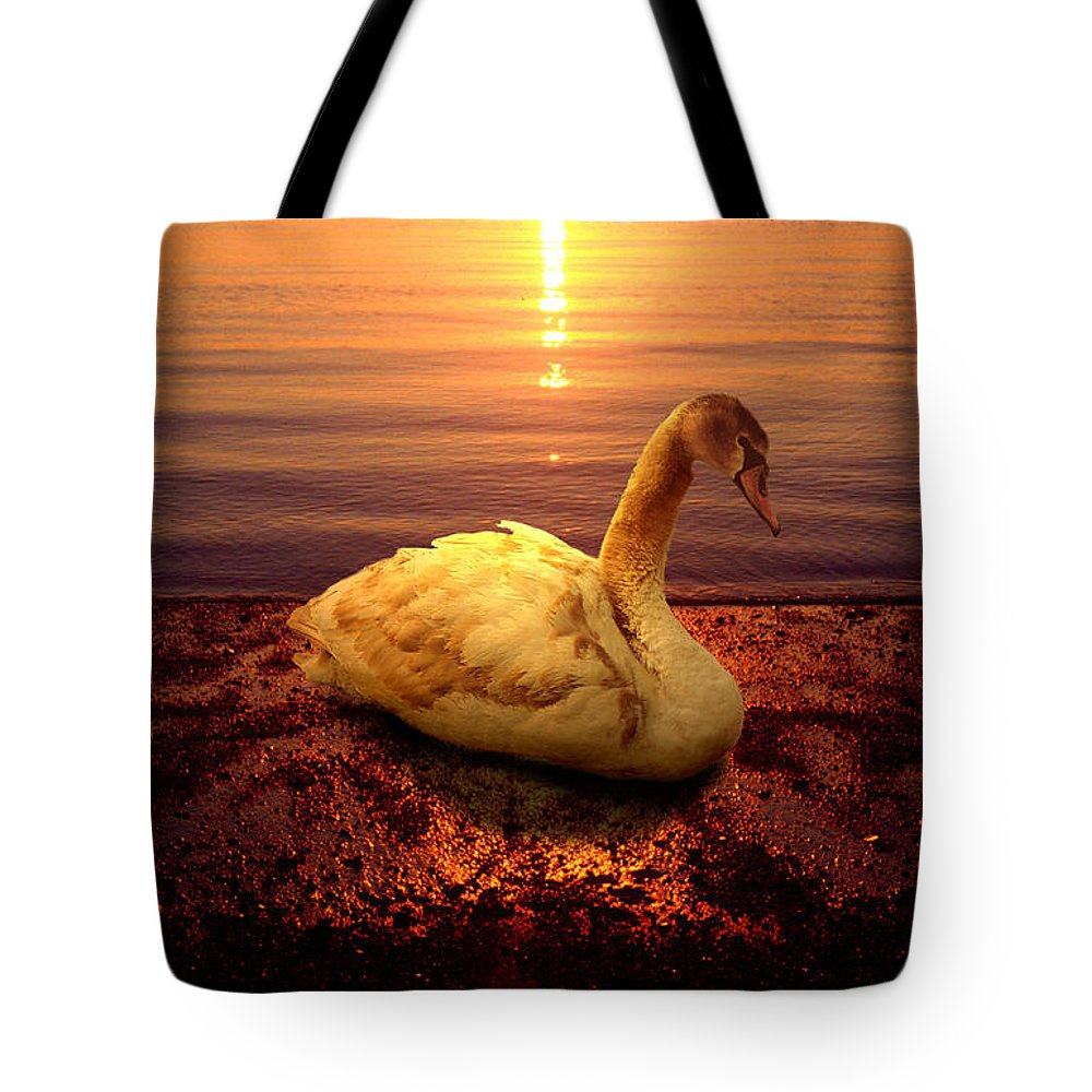 Animal Tote Bag featuring the photograph Swan Lake by Yuri Lev