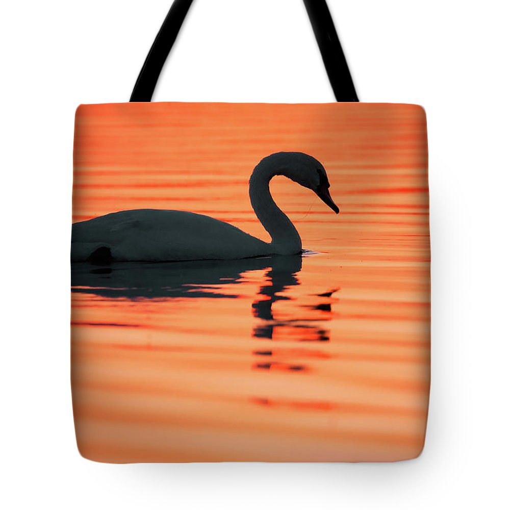 Mute Swan Tote Bag featuring the photograph Swan Silhouette by Roeselien Raimond