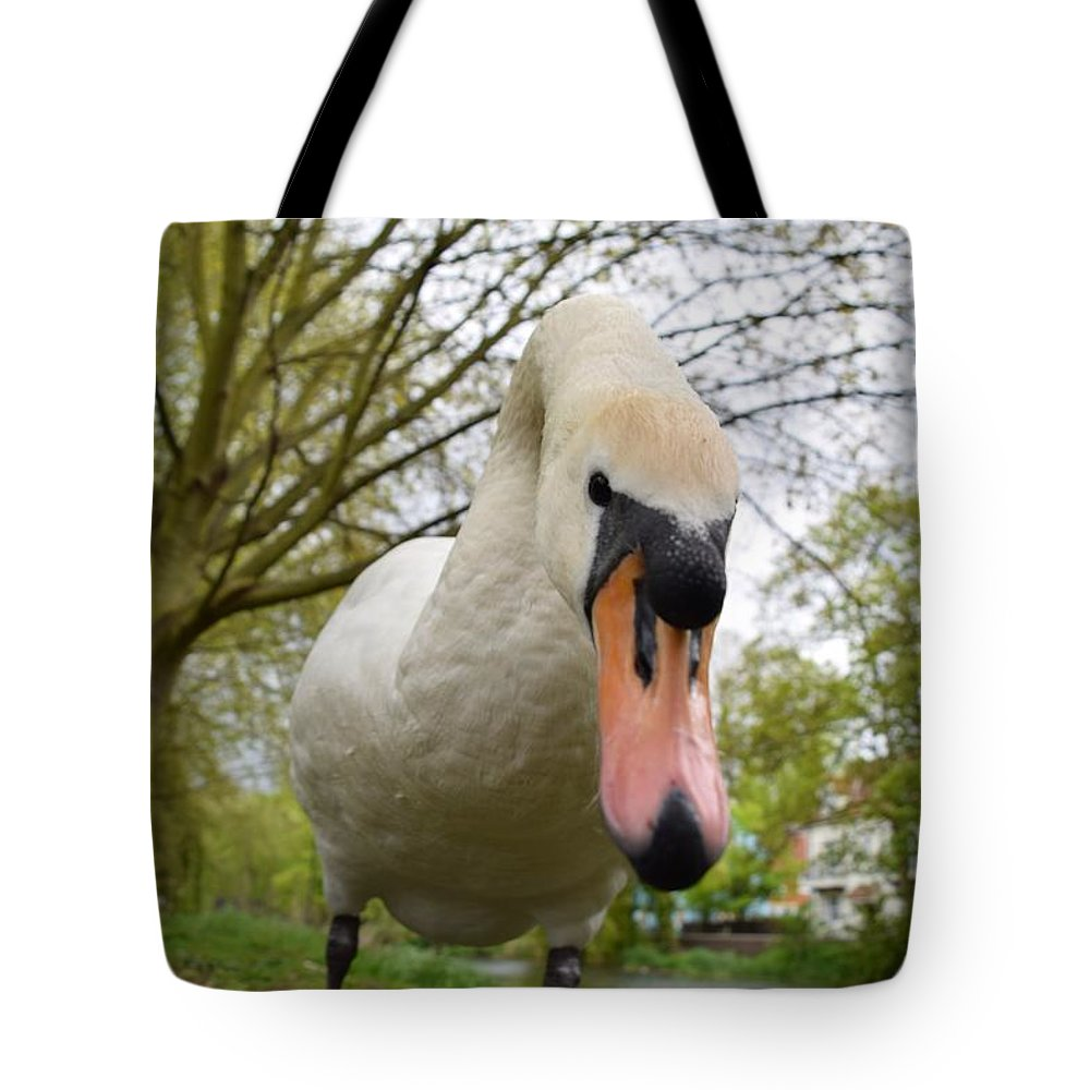 Swan Tote Bag featuring the photograph Swan by Stephen Hulme