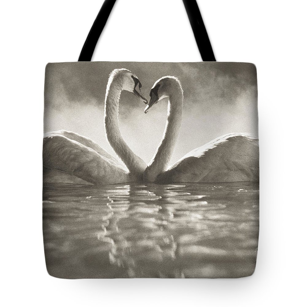 Afternoon Tote Bag featuring the photograph Swans In Lake by Brent Black - Printscapes