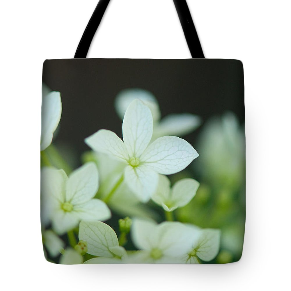 Sweet Tote Bag featuring the photograph Sweet Hydrangea by Lisa Knechtel