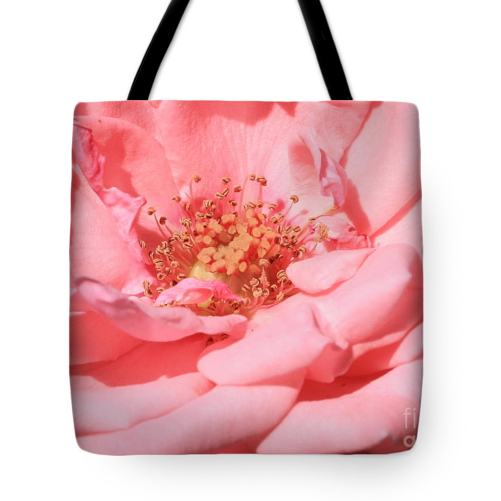 Roses Tote Bag featuring the photograph Sweet Pink Rose by Carol Groenen
