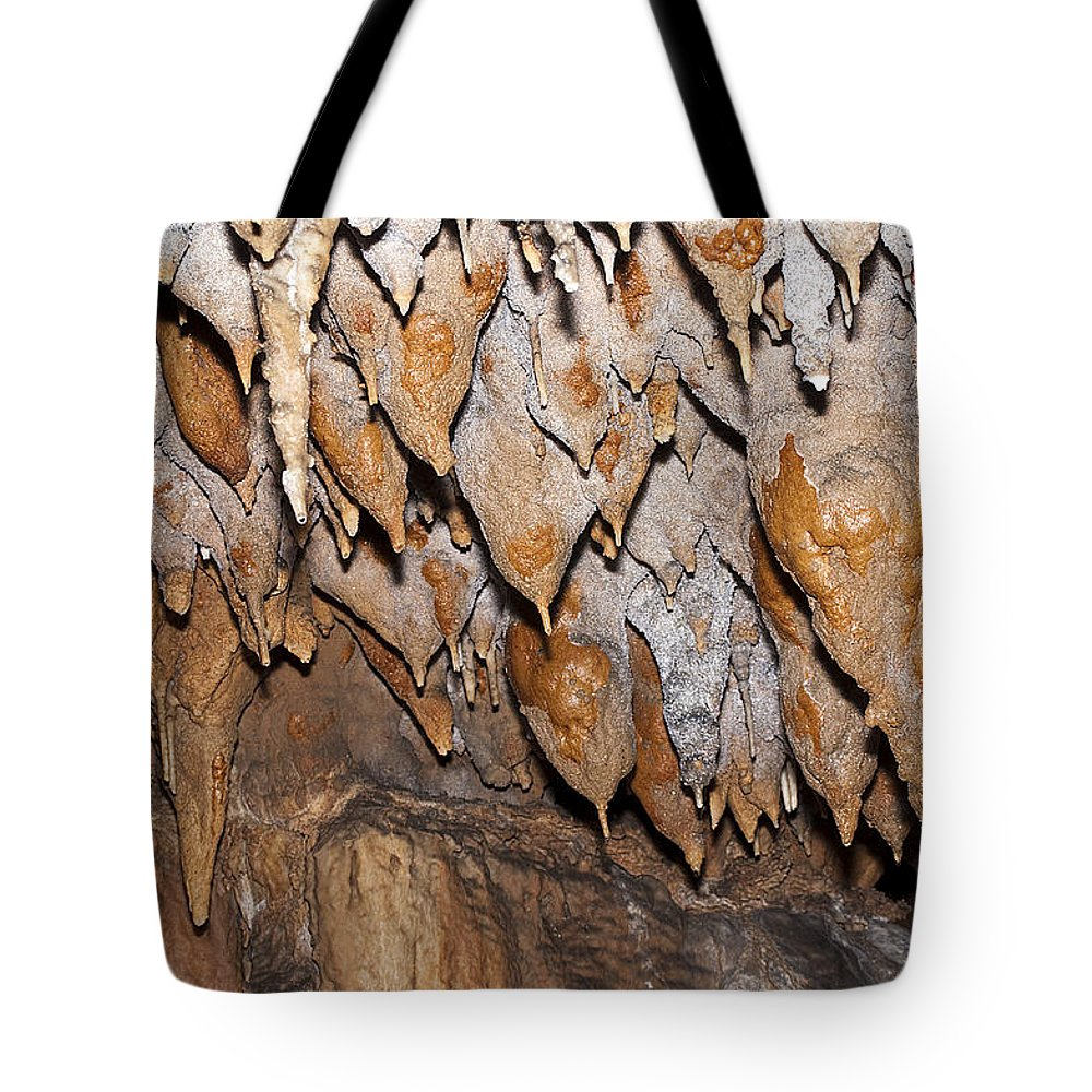 Nature Tote Bag featuring the photograph Sweet Potatoes by Kenneth Albin