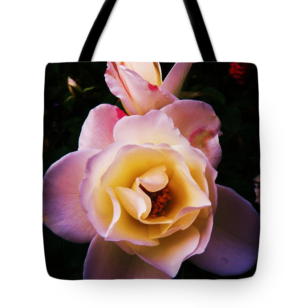 Rose Tote Bag featuring the photograph Sweet Rose by Daniele Smith