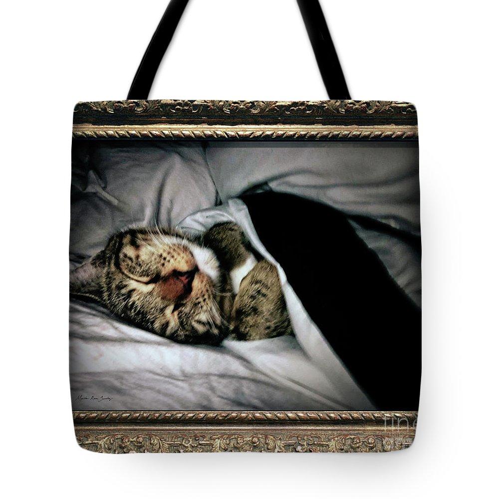 Masartstudio Tote Bag featuring the photograph Sweet Simba Photo A8117 by Mas Art Studio