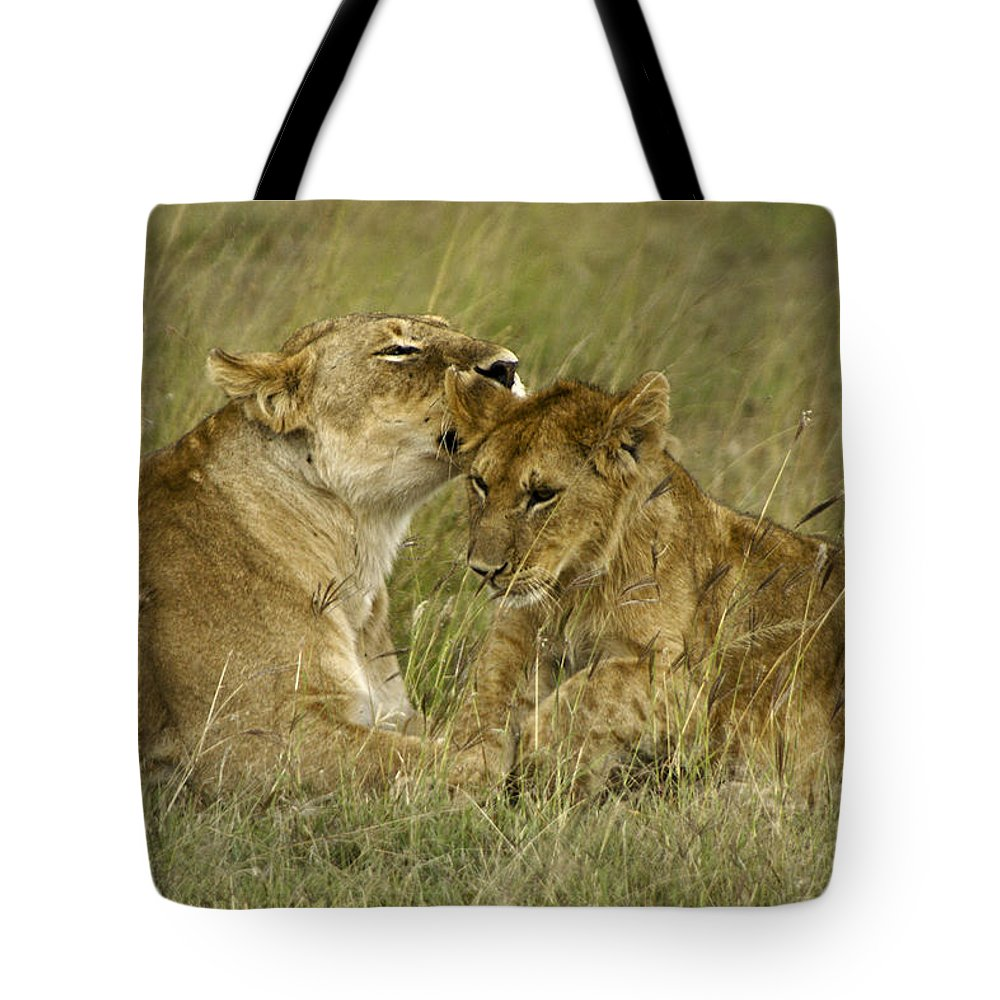 Africa Tote Bag featuring the photograph Sweet Thing by Michele Burgess