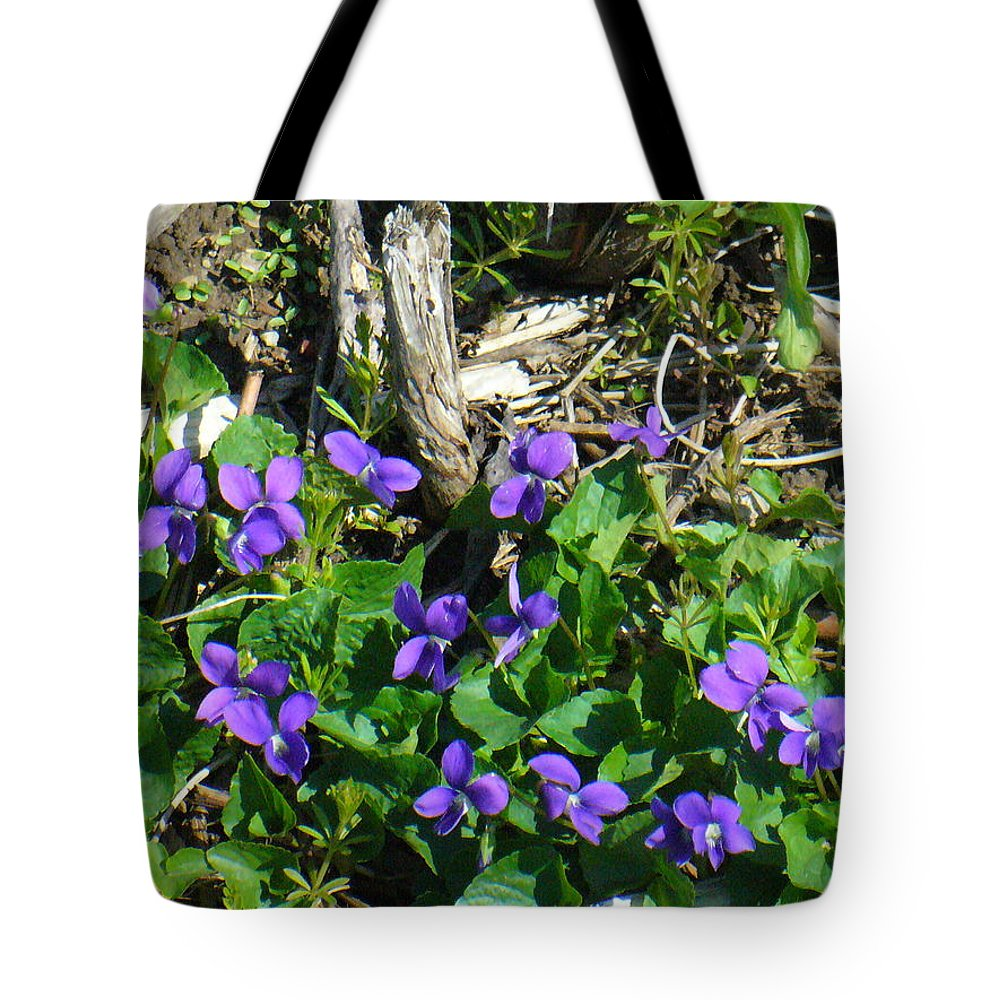 Nature Tote Bag featuring the photograph Sweet Violets by Peggy King