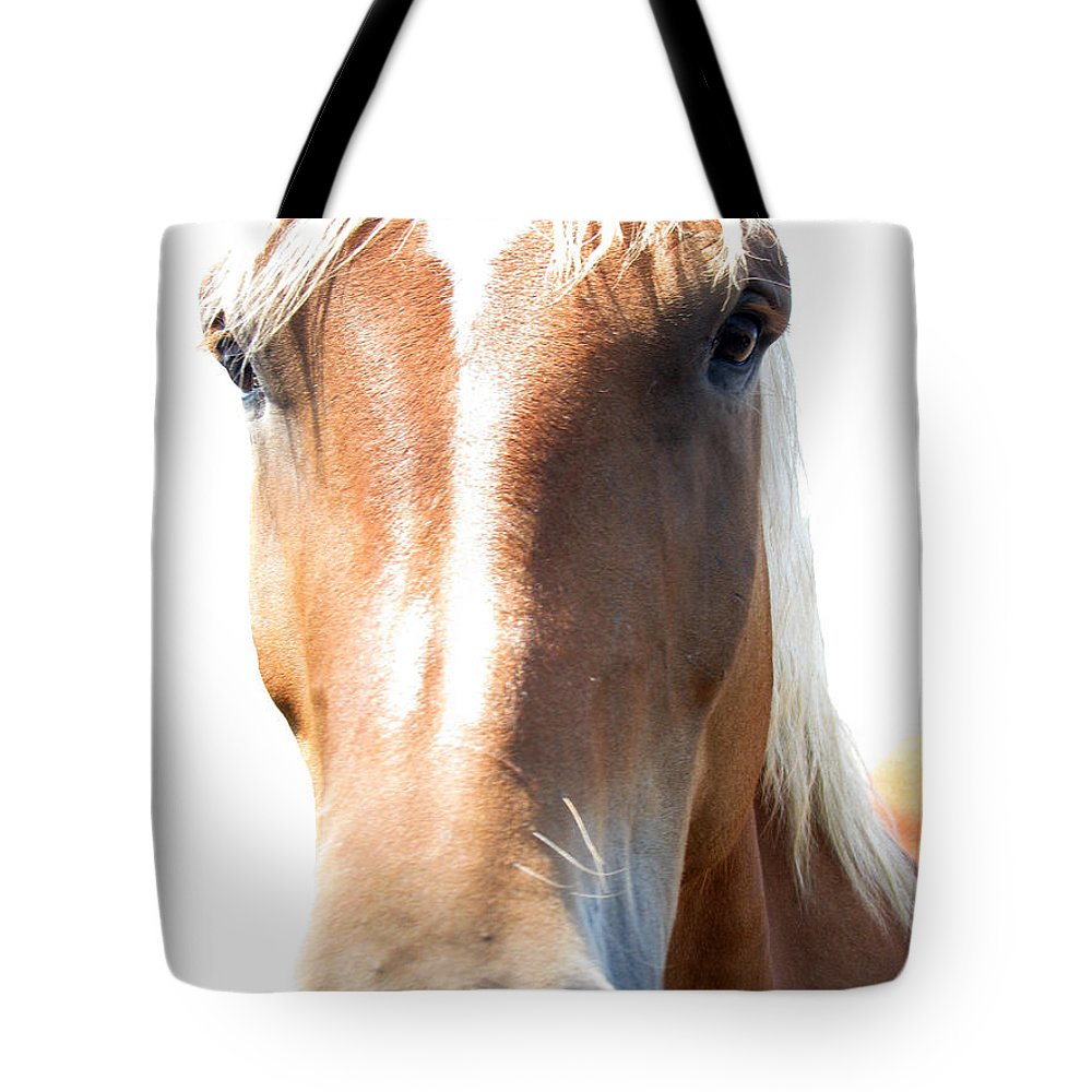 Horse Tote Bag featuring the photograph Sweetie by Amanda Barcon