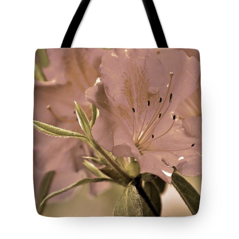 Azaleas Tote Bag featuring the photograph Sweetness by Donna Shahan