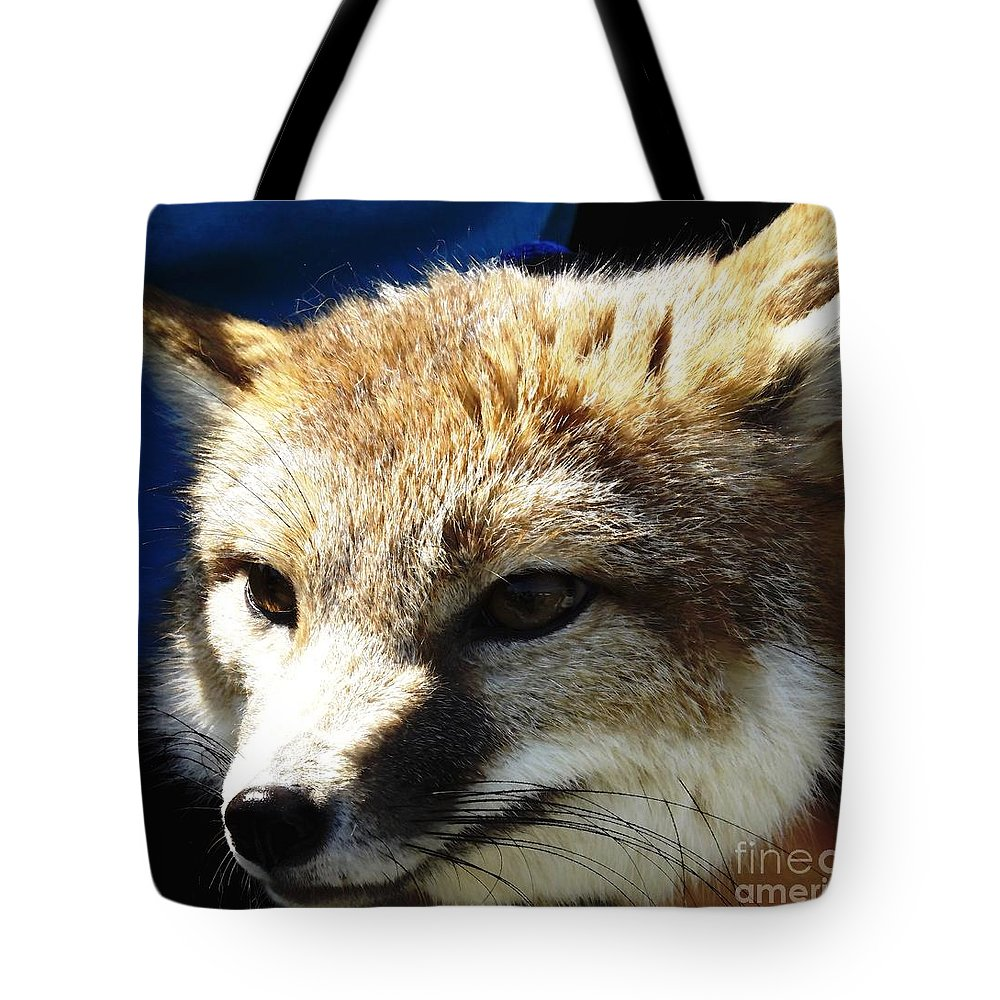 Foxes Tote Bag featuring the photograph Swift Fox With Oil Painting Effect by Rose Santuci-Sofranko