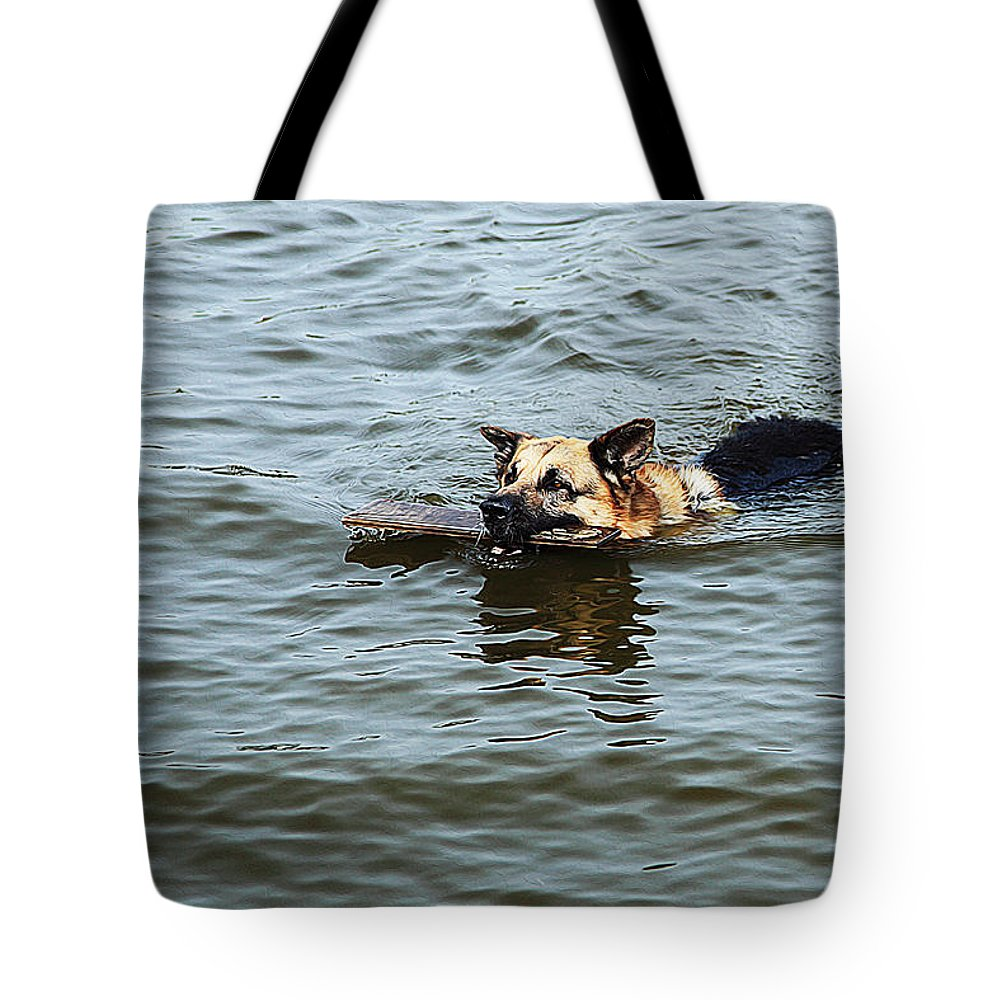 Dog Art Tote Bag featuring the painting Swimming Dog by Queso Espinosa