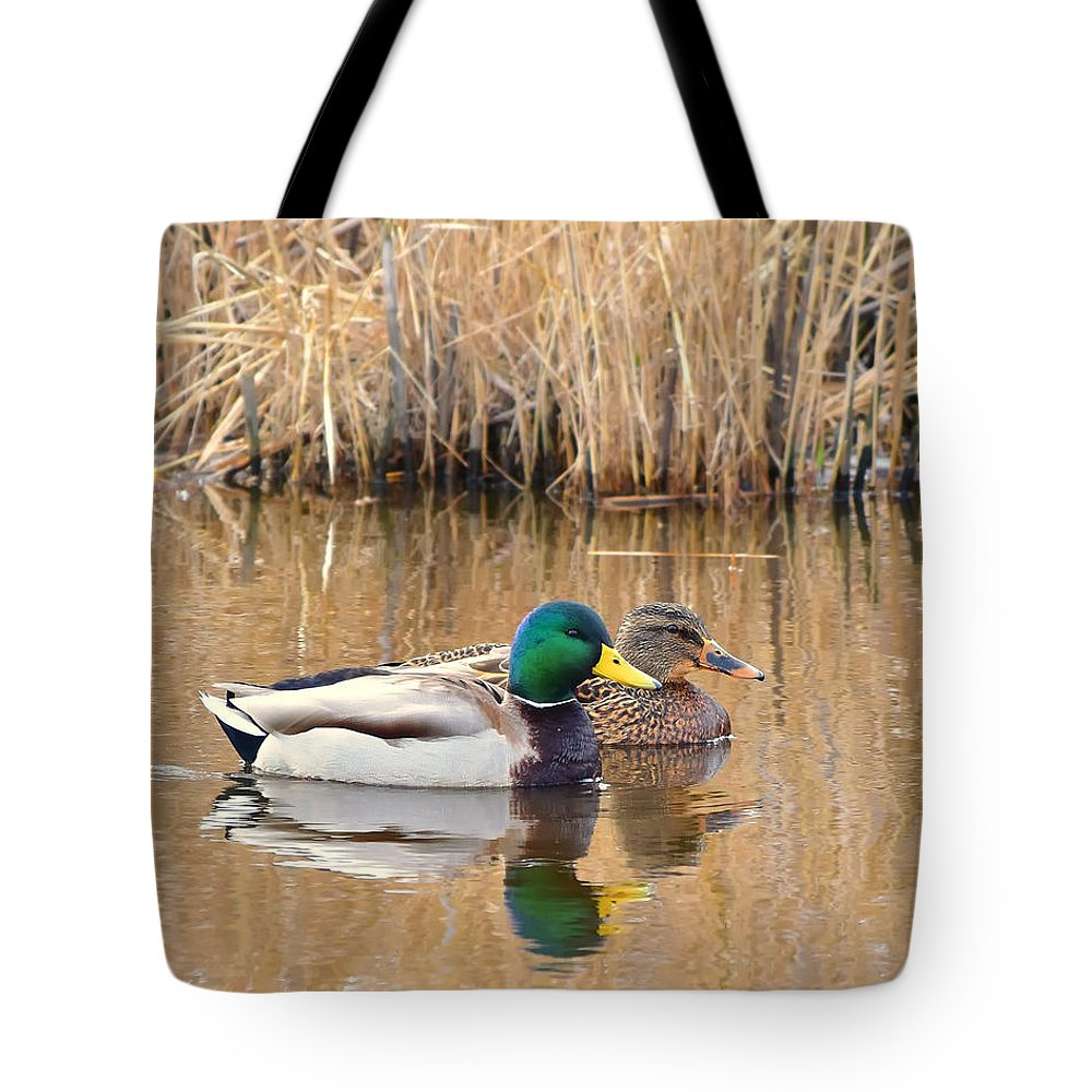Ann Keisling Tote Bag featuring the photograph Swimming Partners by Ann Keisling
