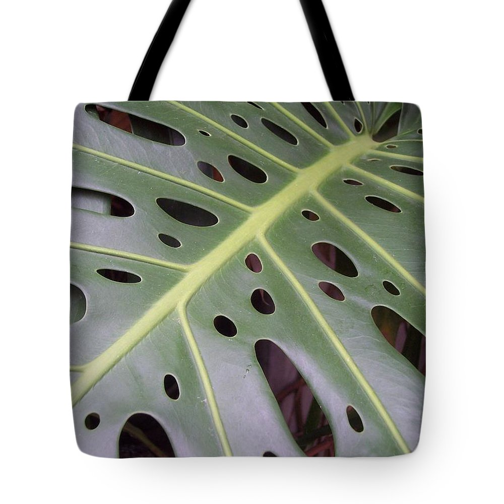 Swiss Cheese Plant Tote Bag featuring the photograph Swiss Cheese Plant by Michelle Miron-Rebbe