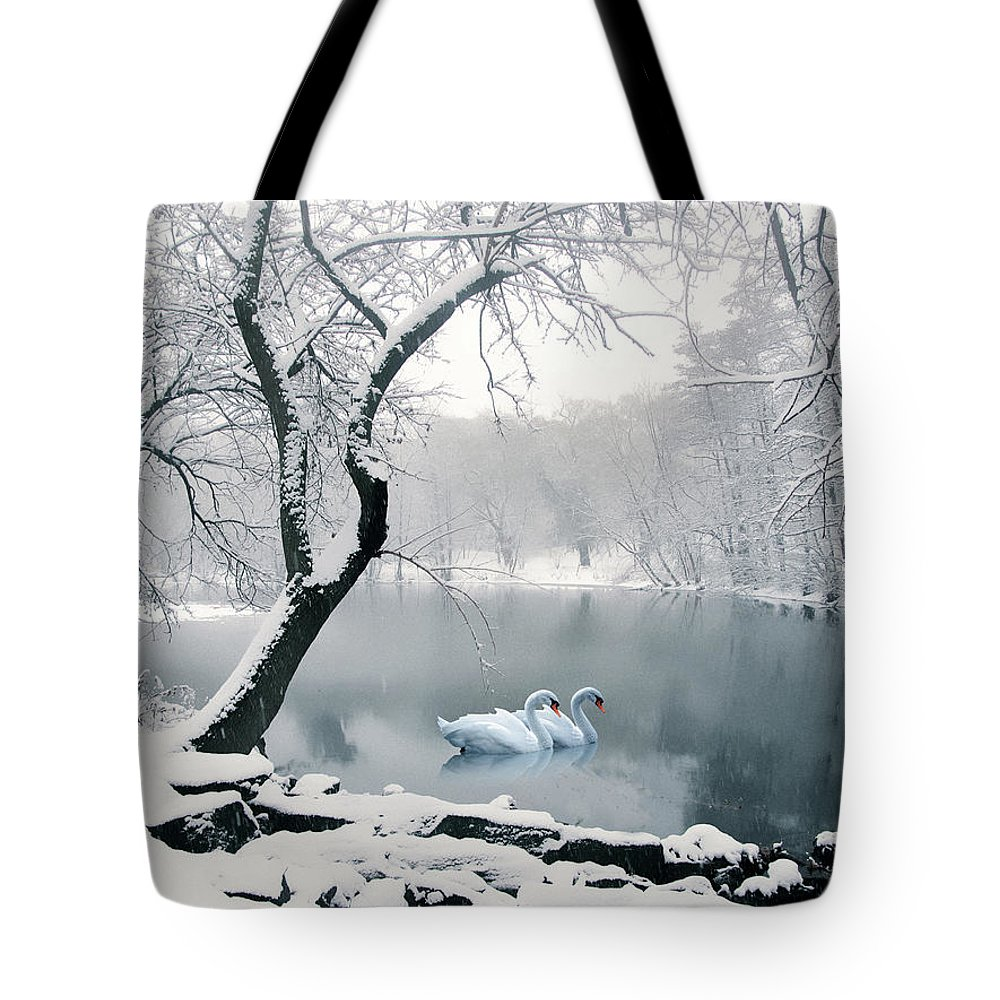 Winter Tote Bag featuring the photograph Synchronicity by Jessica Jenney