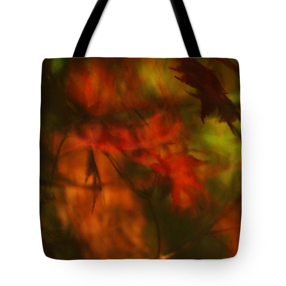 Leaves. Leaf Tote Bag featuring the photograph Synonymous Light Mourning A Dead Leaf by Gary Bartoloni