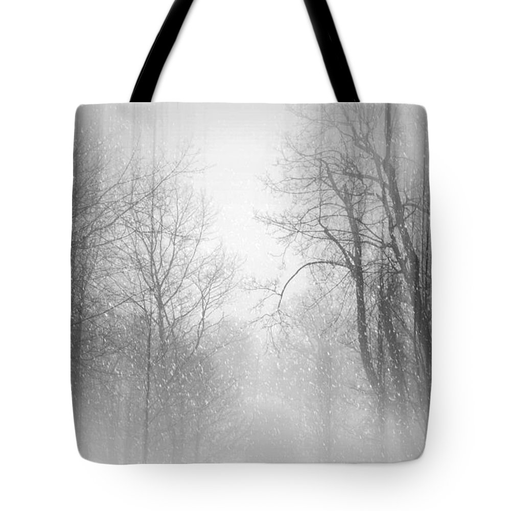 Snow Scene Tote Bag featuring the photograph Take Me There by Diana Angstadt