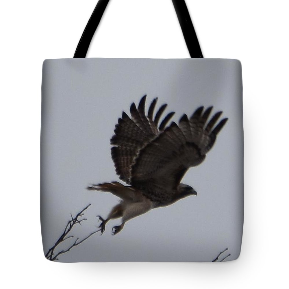 Hawk Tote Bag featuring the photograph Takeoff by Linda Benoit