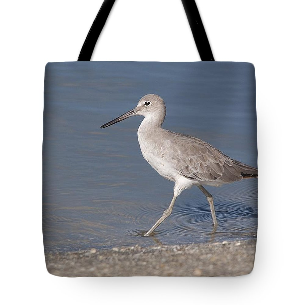 Wildlife Tote Bag featuring the photograph Taking A Stroll by Kenneth Albin