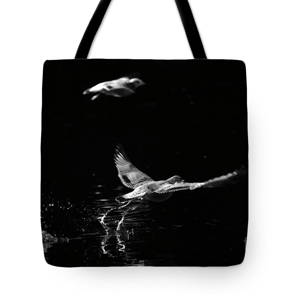 Seagull Tote Bag featuring the photograph Taking Off by Karol Livote