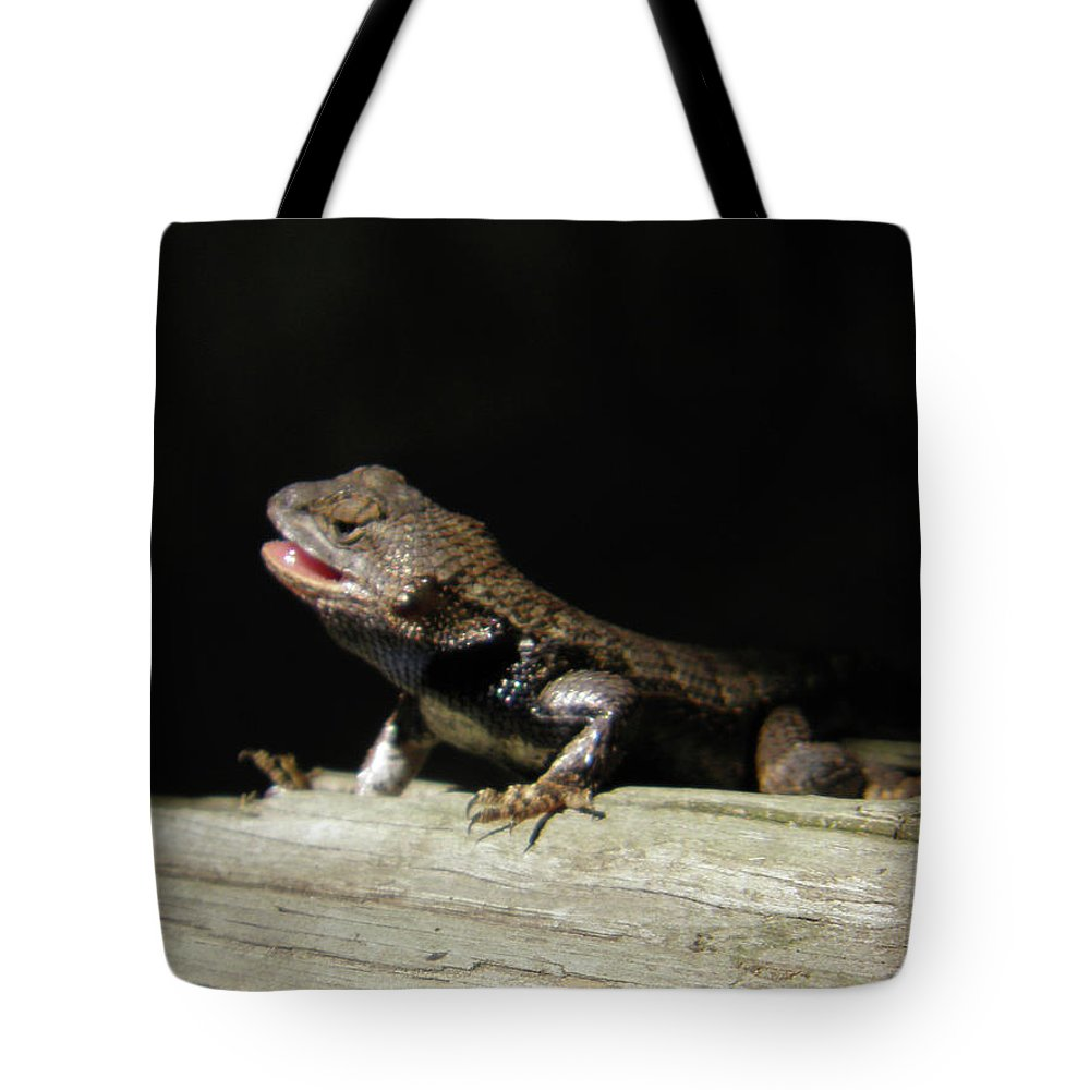Lizards Tote Bag featuring the photograph Talking Lizard by Angelcia Wright