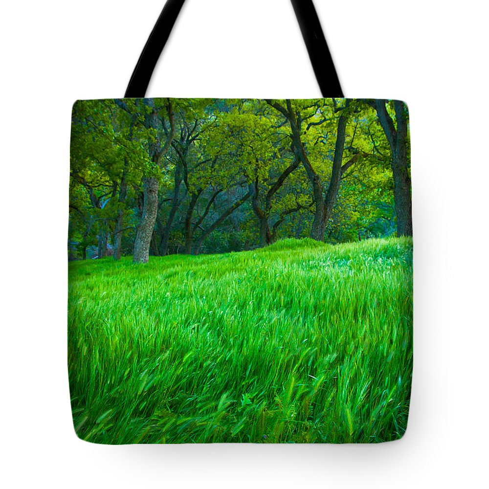 Landscape Tote Bag featuring the photograph Tall Grass At Twilight by Marc Crumpler