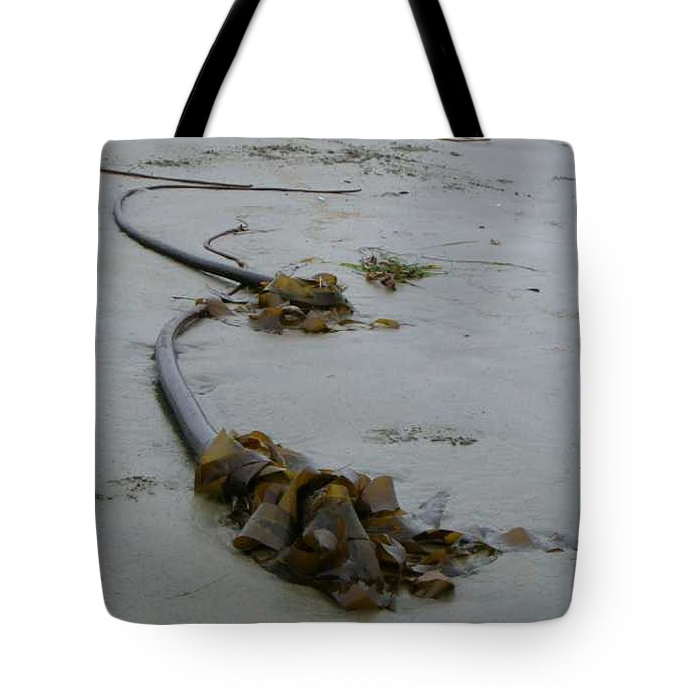 Kelp On Beach Tote Bag featuring the photograph Tall Kelp by Claudia Stewart
