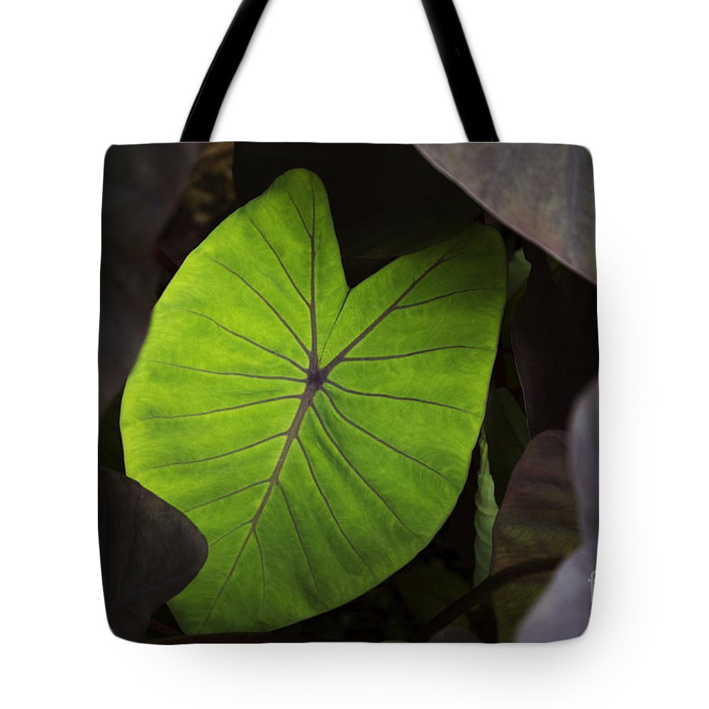 Agriculture Tote Bag featuring the photograph Taro Hoomaluhia 2 by Mary Van de Ven - Printscapes