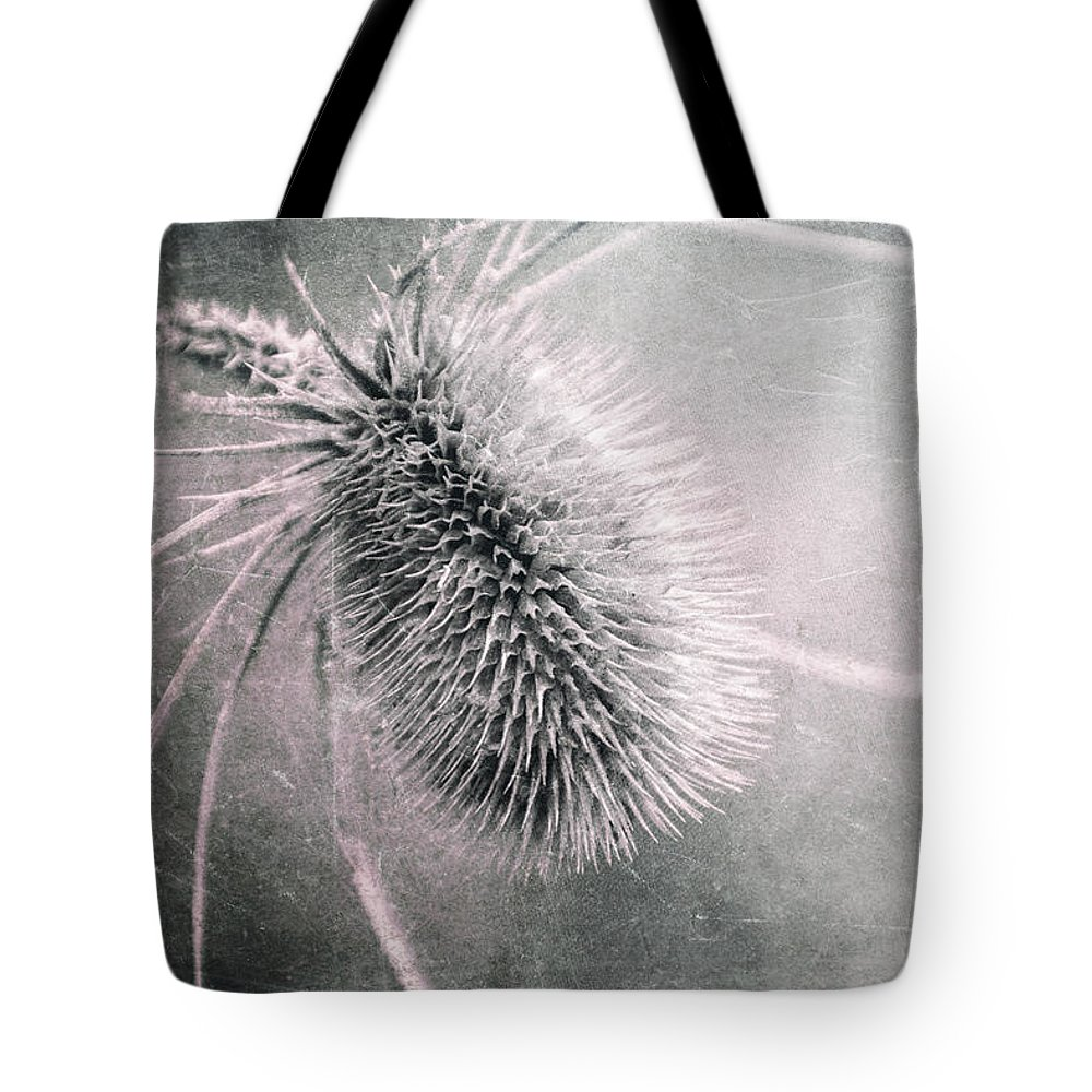 Plant Tote Bag featuring the photograph Teazel Weed by Tom Mc Nemar